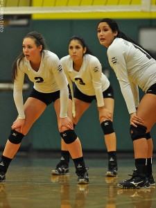 Lady Dolphin Volleyball Beats Skagit Valley College On The Road